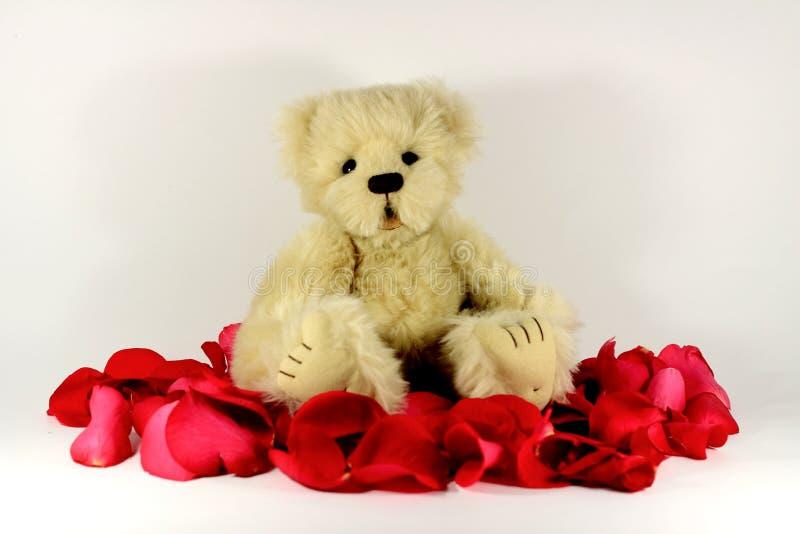 Oso del peluche de las tarjetas del día de San Valentín fotografía de archivo libre de regalías