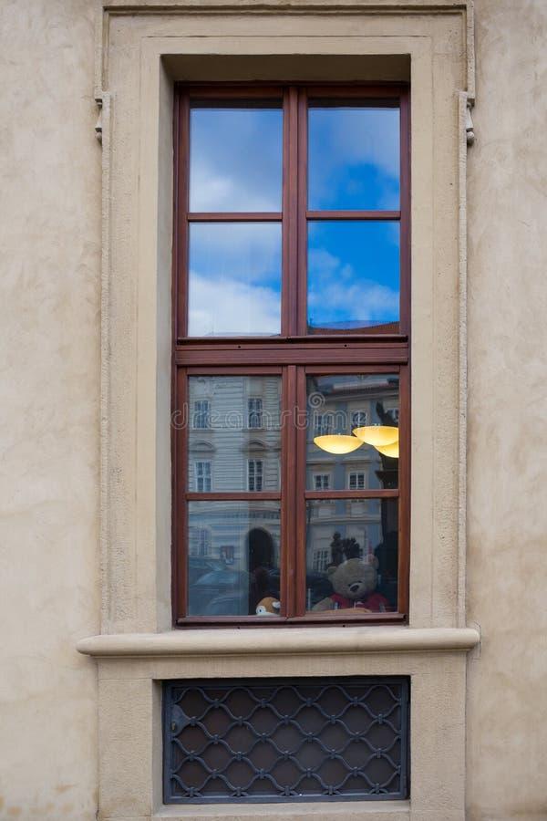 Oso en la ventana, Praga, República Checa de Tedy fotografía de archivo libre de regalías