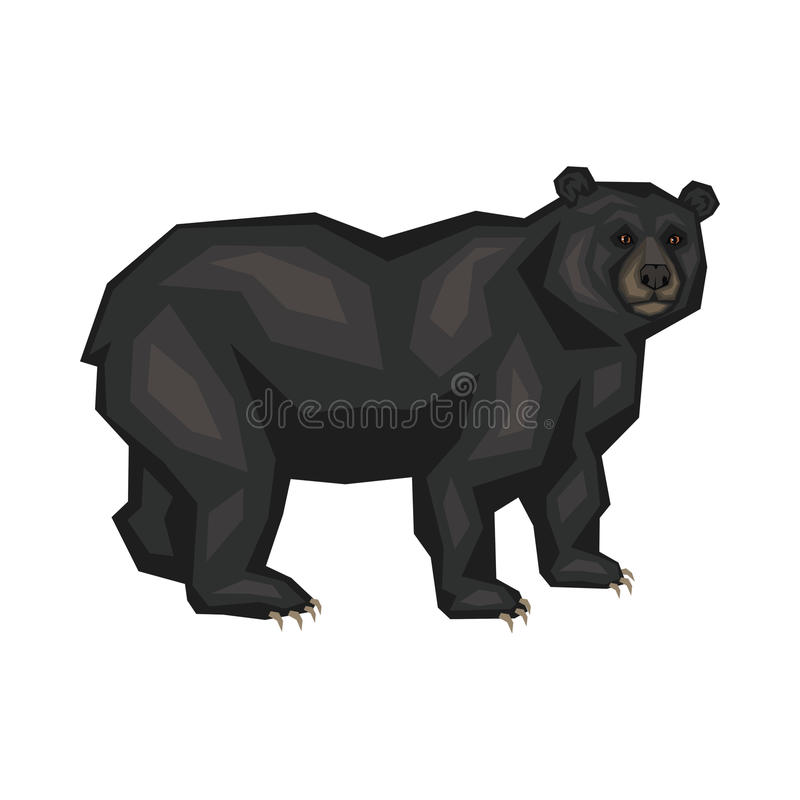Oso negro americano libre illustration