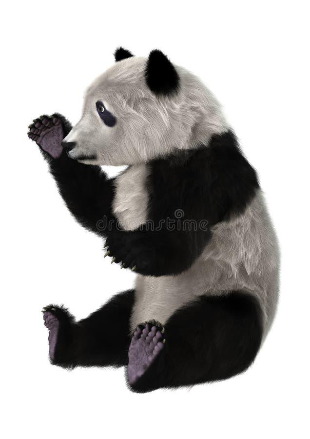Oso polar Cub ilustración del vector