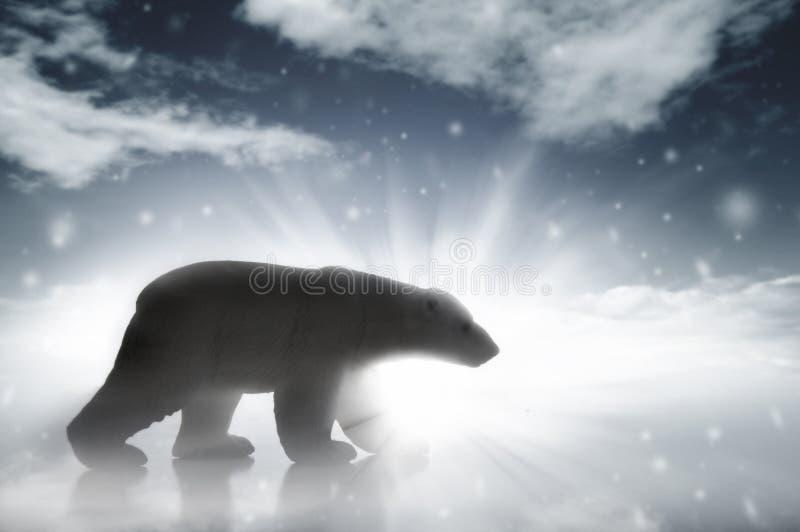 Oso polar en una tormenta de la nieve imagen de archivo