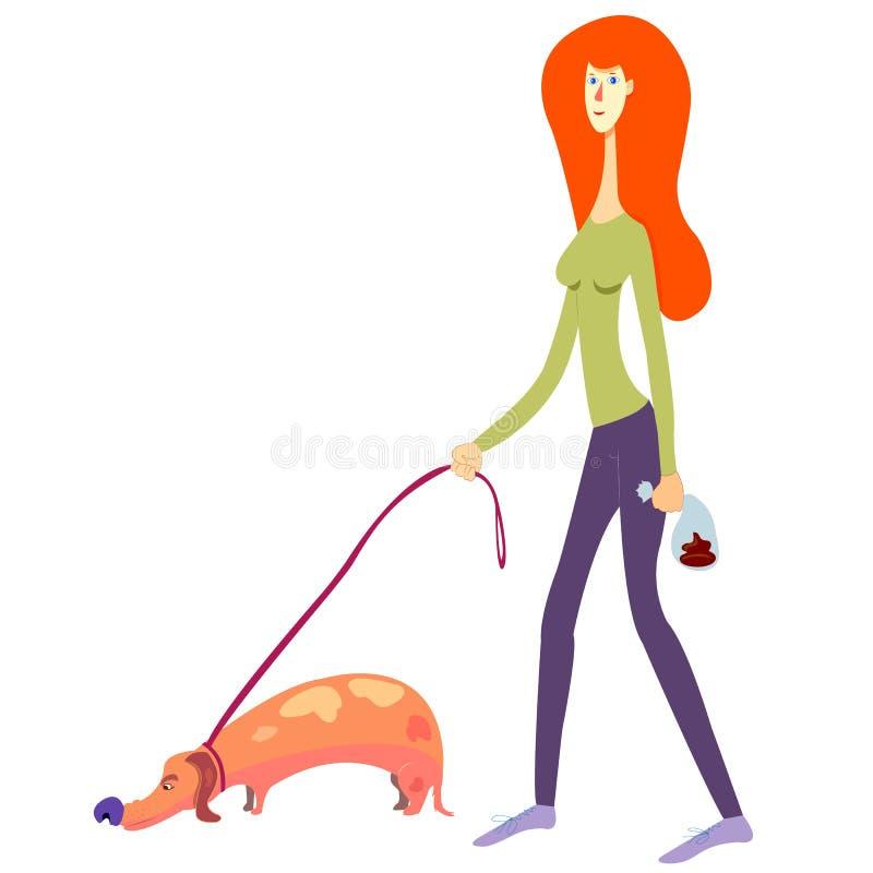 Osoba podnosił w górę psa gówna Czerwona z włosami dziewczyna podnosi w górę psa kaku stawia je w torbę Odizolowywający na Białej ilustracji