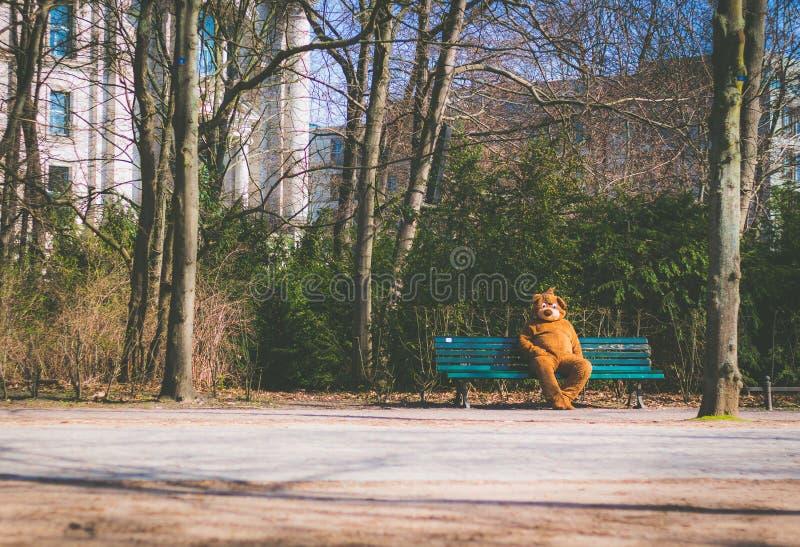 Osoba ubierał w niedźwiadkowym kostiumu obsiadaniu na ławce obraz royalty free