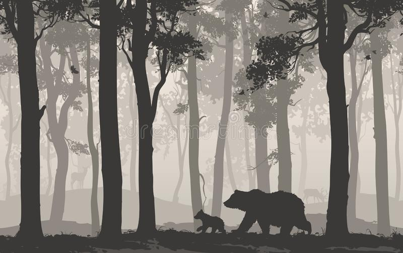 Osos en el bosque libre illustration