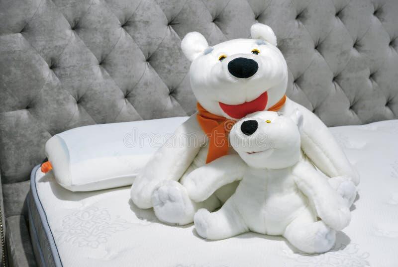 Osos polares de los juguetes suaves en el interior del dormitorio foto de archivo libre de regalías