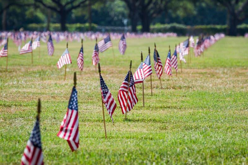Oss flaggor i en veterankyrkogård på veterandag royaltyfria foton