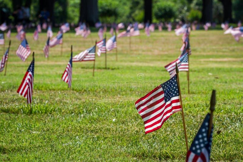 Oss flaggor i en veterankyrkogård på veterandag royaltyfria bilder