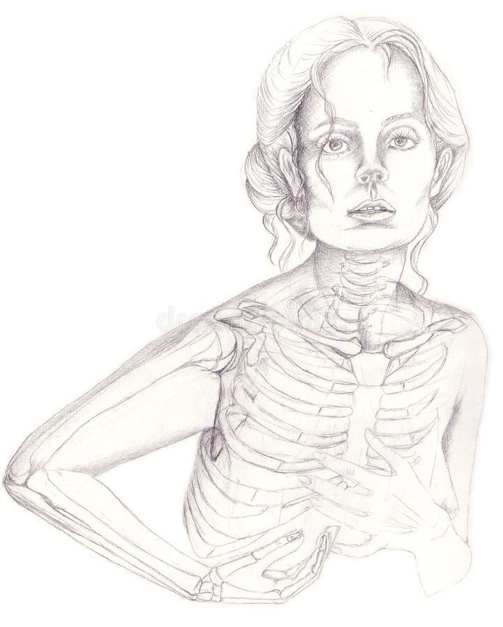 Ossa della gabbia e di braccio di Thoracical royalty illustrazione gratis