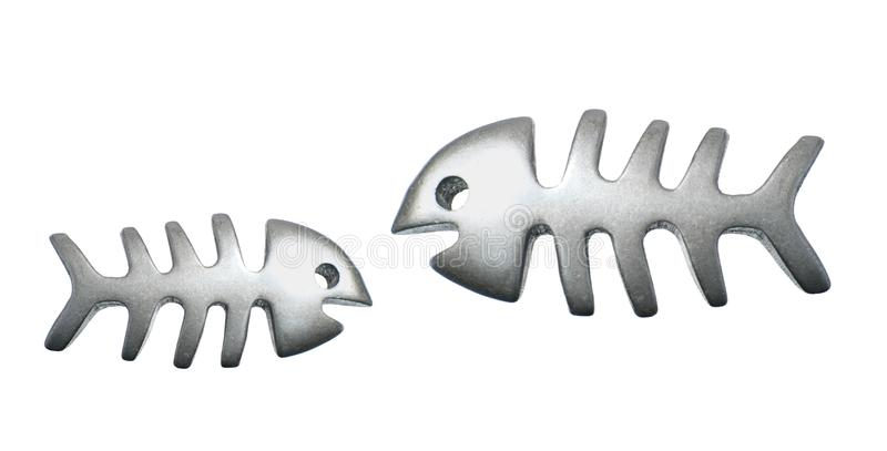 Ossa di pesce immagine stock