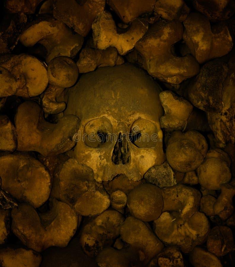 Ossa e crani umani, cappella delle ossa a Evora immagine stock libera da diritti
