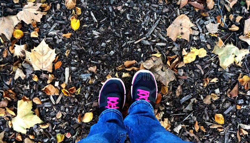 Osservando giù i vostri piedi in foglie immagine stock libera da diritti
