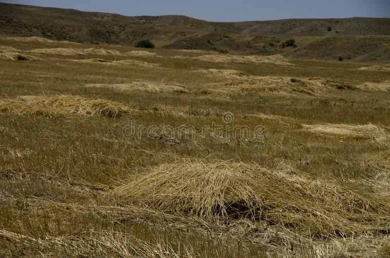 Osservi il terreno agricolo nella valle del sud di Cappadocia immagine stock libera da diritti