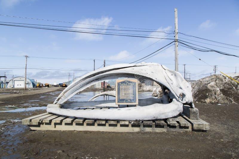 Ossos da maxila de uma baleia no carrinho de mão, Alaska imagens de stock