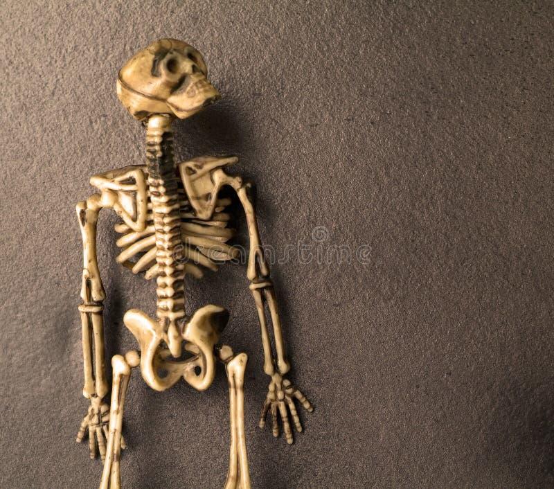 Ossos do esqueleto de Halloween imagem de stock royalty free