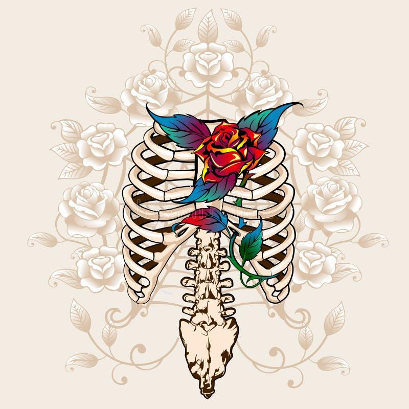 Ossos e rosas da espinha ilustração do vetor