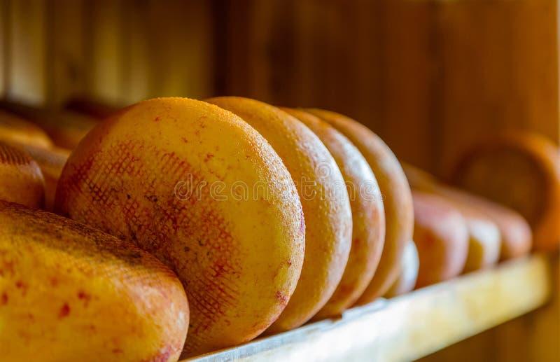 ost heads på räknaren i ett gastronomiskt lager arkivbilder