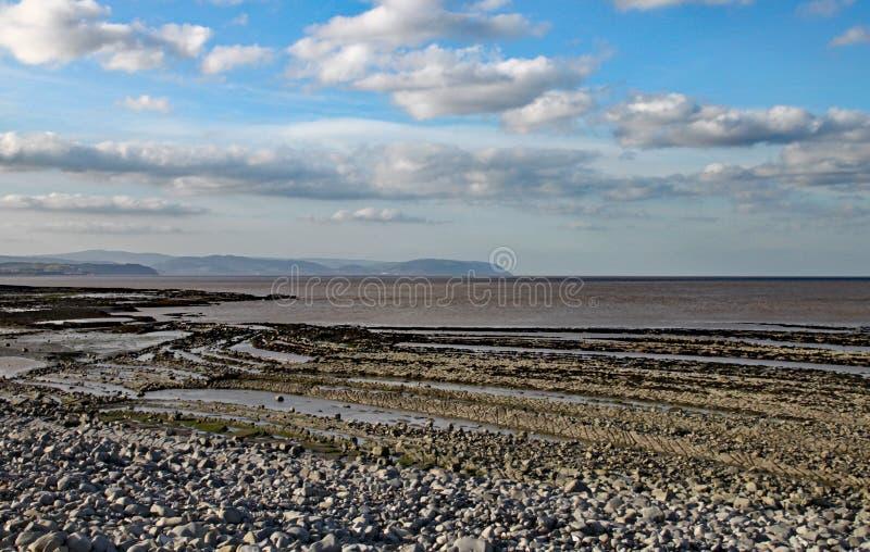Ost-Quantoxhead-Strand in Somerset Die Kalksteinpflasterungen datieren zur Juraära und sind ein Paradies für versteinerte Jäger lizenzfreies stockfoto