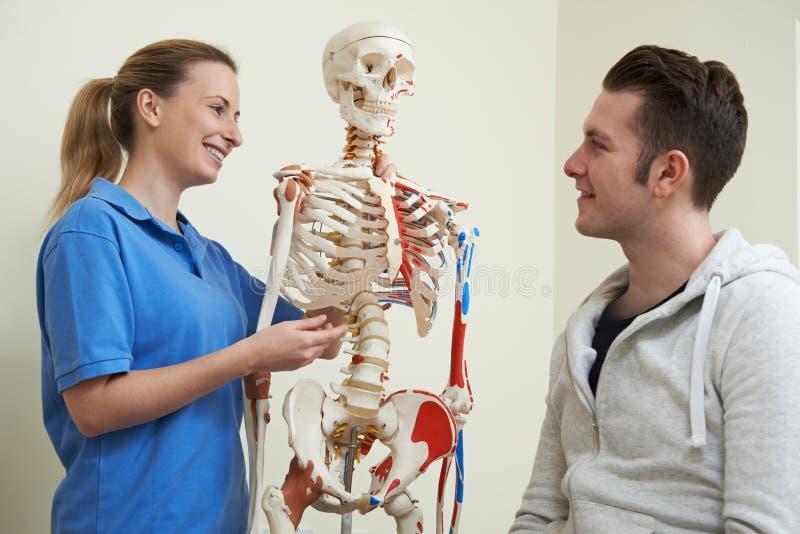 Osteopat som diskuterar skada med det tålmodiga användande skelettet fotografering för bildbyråer