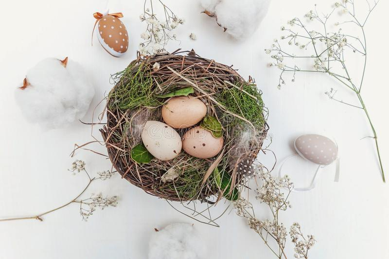 Osterei im Nest auf rustikalen hölzernen Planken stockbilder