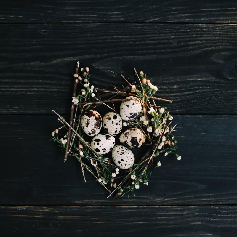 Ostereier auf h?lzernem Hintergrund Rustikales Ostern-Stillleben mit Wachteleiern, trockene Weidenniederlassungen auf dunklem Hin lizenzfreie stockfotos