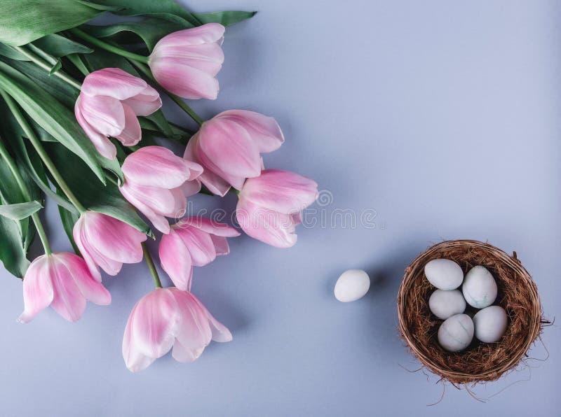 Ostereier in den Nest- und Tulpenblumen auf Frühlingshintergrund Draufsicht mit Kopienraum Glückliche Ostern-Karte stockfotografie