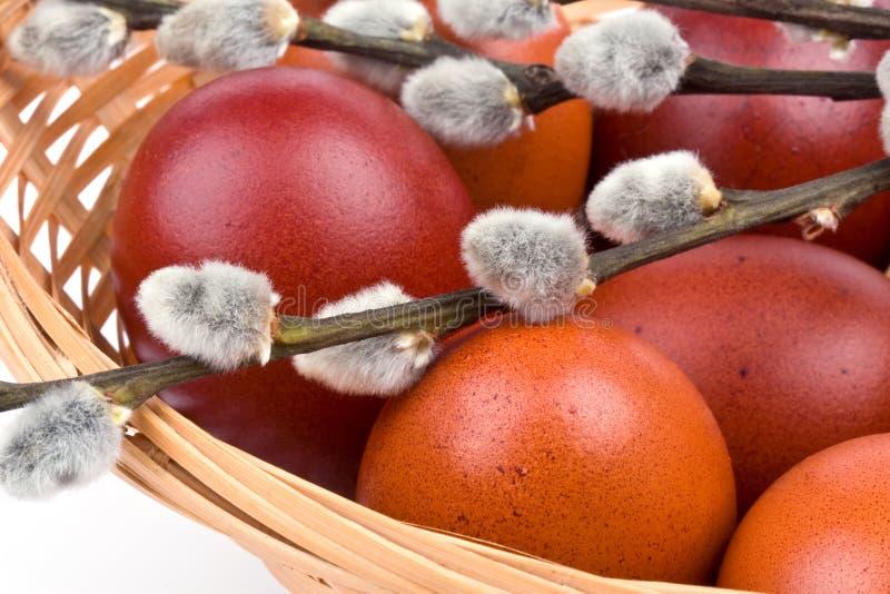 Ostereier in einem Korb stockbild