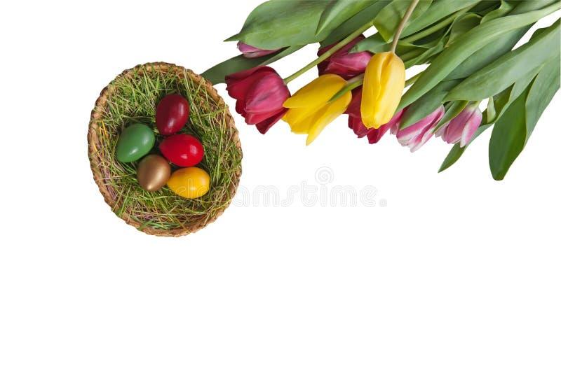 Ostereier gemalt mit den bunten Tulpen lokalisiert auf weißem Hintergrund lizenzfreies stockbild