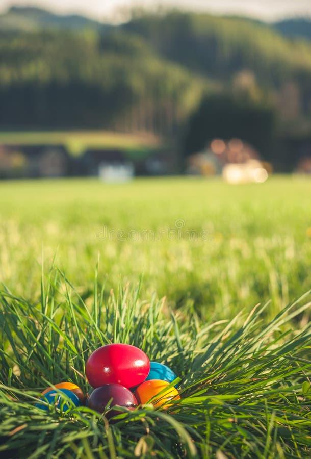 Ostereier im Gras stockbilder