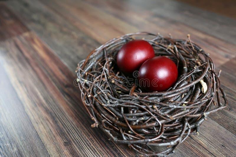 Ostereier im Nest stockfoto