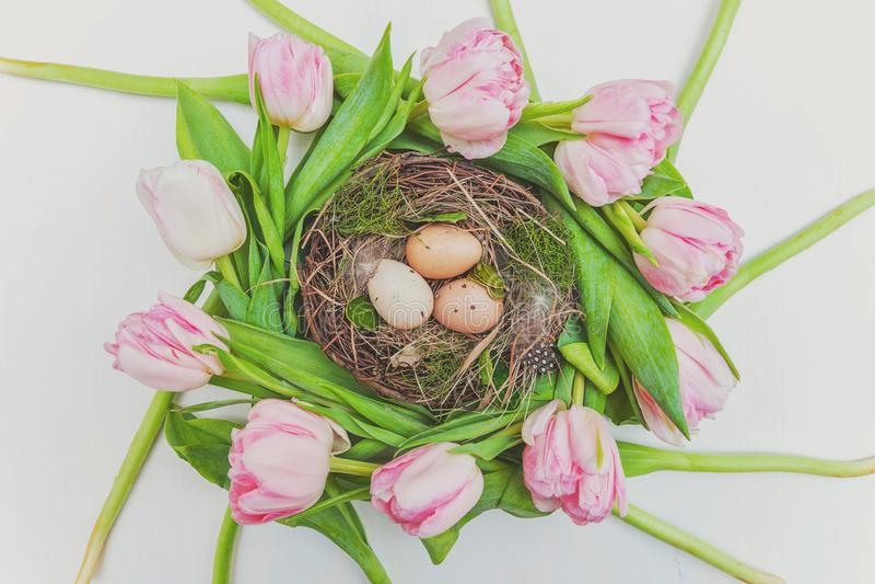 Ostereier im Nest mit Moos und im rosa frischen Tulpenblumenstrauß auf rustikalem weißem hölzernem Hintergrund lizenzfreie stockfotos