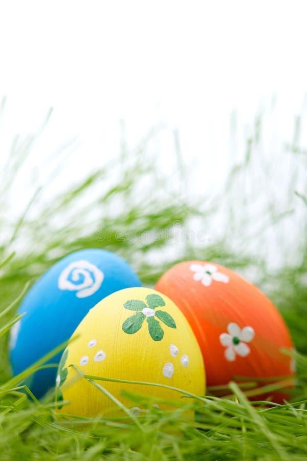 Ostereier versteckt in einem Gras stockbilder