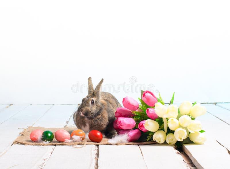 Osterhase mit farbigen Eiern und Blumenstrauß von Tulpen lizenzfreies stockfoto