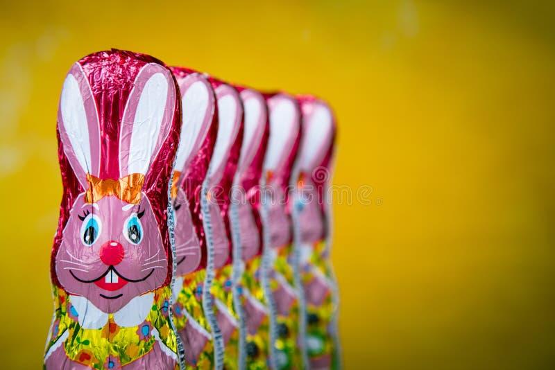 Osterhase oder Kaninchen lizenzfreie stockfotografie