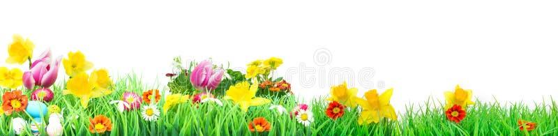 Ostern, Blumen-Wiese, lokalisiert, Fahne stockbild