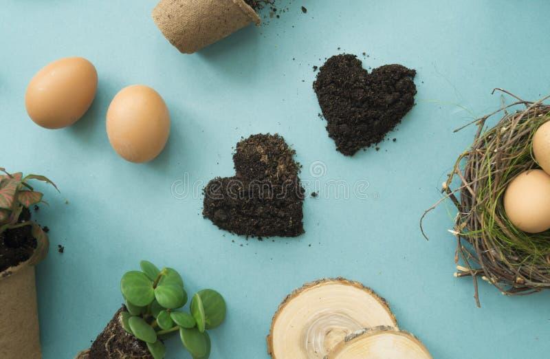 Ostern compisition Der Prozess der Verpflanzung von Blumen, Draufsicht Hintergrund für eine Einladungskarte oder einen Glückwunsc stockfotos