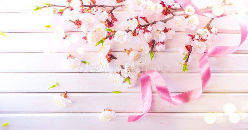 Ostern-Frühlings-Blüte auf weißem hölzernem Plankenhintergrund Ostern-Aprikosenblumen auf hölzernem Grenzkunstentwurf Rosa blühen lizenzfreies stockfoto