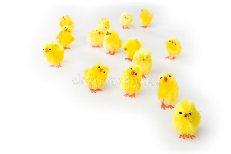 Ostern-Hennen stockfoto