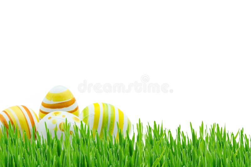 Ostern-Hintergrund mit Rosen und Narzissen am weißen Hintergrund lizenzfreie stockbilder