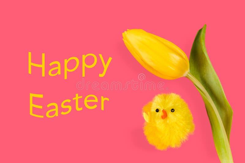 Ostern-Huhn und -tulpe auf einem rosa Hintergrund vektor abbildung