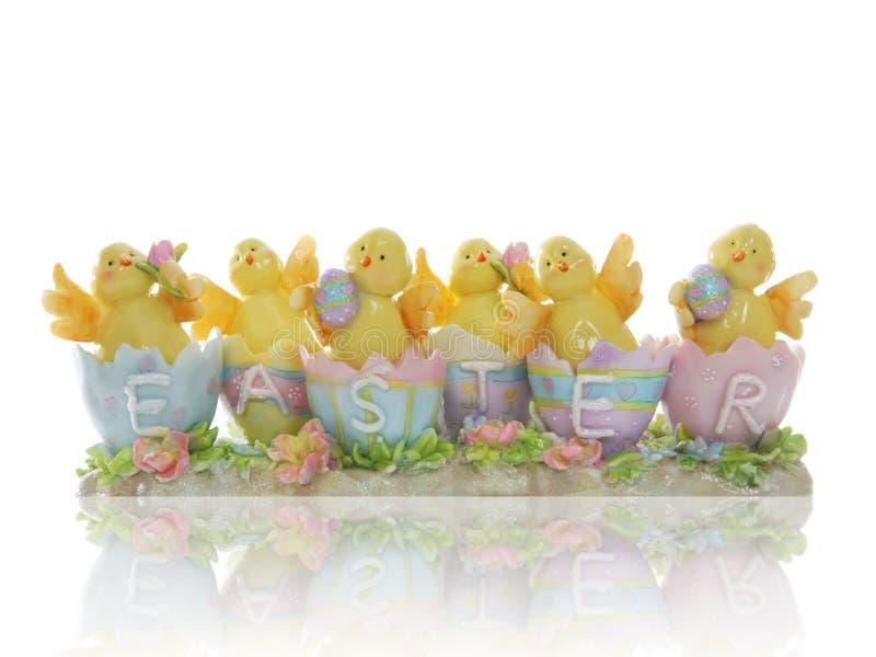 Ostern-Küken stockbilder