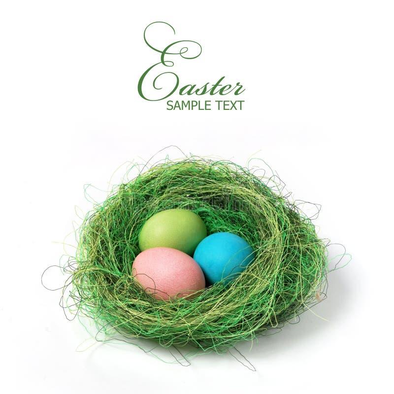 Ostern-Nest lizenzfreies stockbild