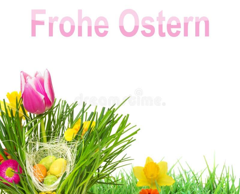 Ostern-Wiese und Ostereier stockbild