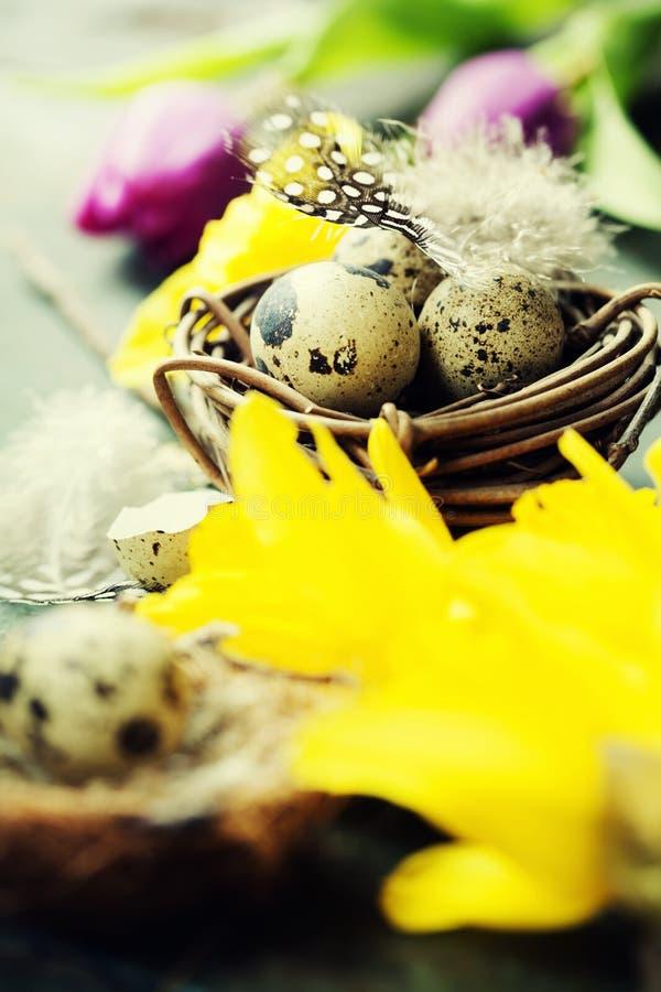 Ostern-Zusammensetzung mit Tulpen, bunten Eiern und Nest lizenzfreies stockfoto