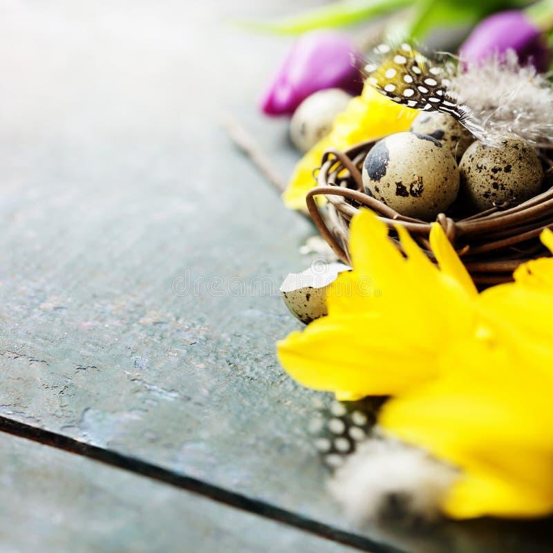 Ostern-Zusammensetzung mit Tulpen, bunten Eiern und Nest stockbild