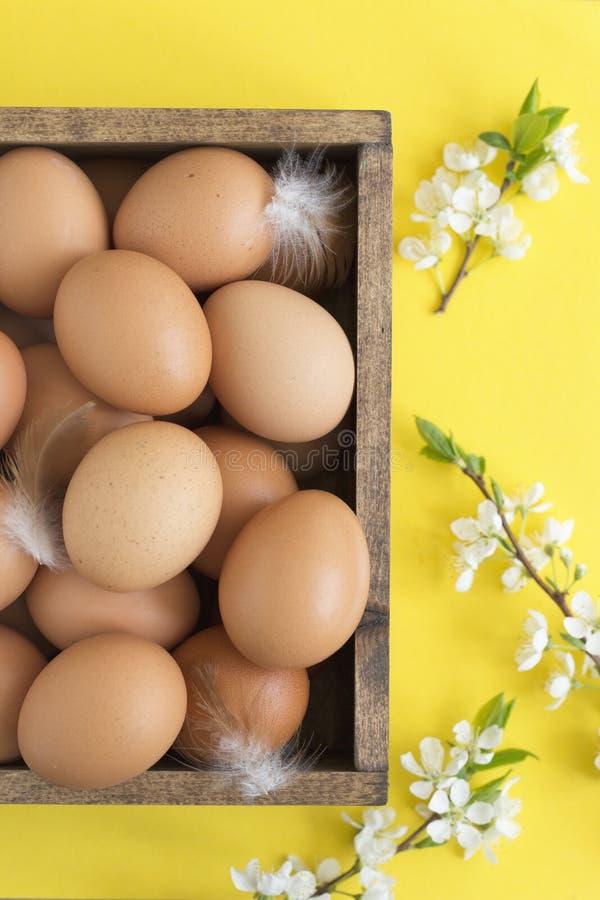 Ostern-Zusammensetzung von Eiern und von Blüte über hellgelbem Pastellhintergrund, Draufsicht stockbilder