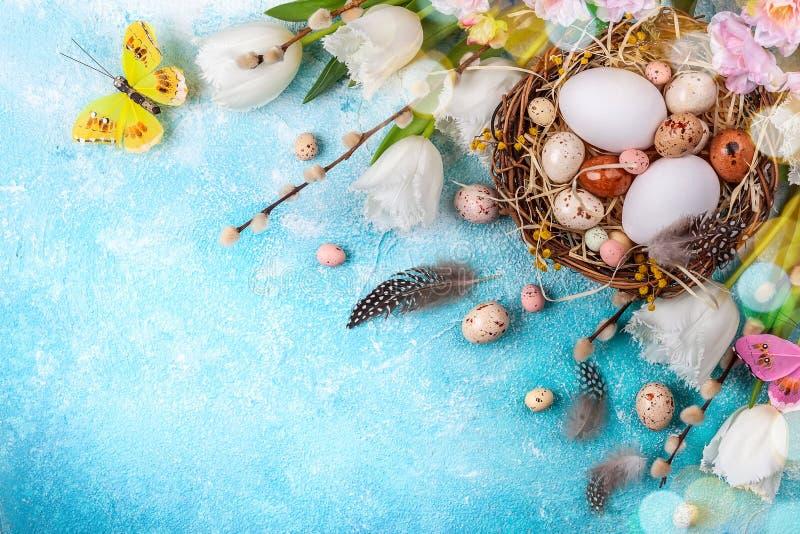 Osterzusammensetzung mit Ostereiern in Nest, Falten von Weichweiden und weißen Tulpen lizenzfreies stockbild
