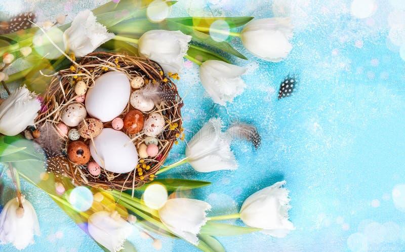Osterzusammensetzung mit Ostereiern in Nest, Falten von Weichweiden und weißen Tulpen lizenzfreie stockfotografie