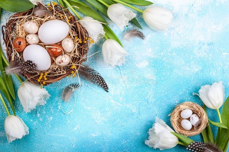 Osterzusammensetzung mit Ostereiern in Nest und weißen Tulpen stockbild
