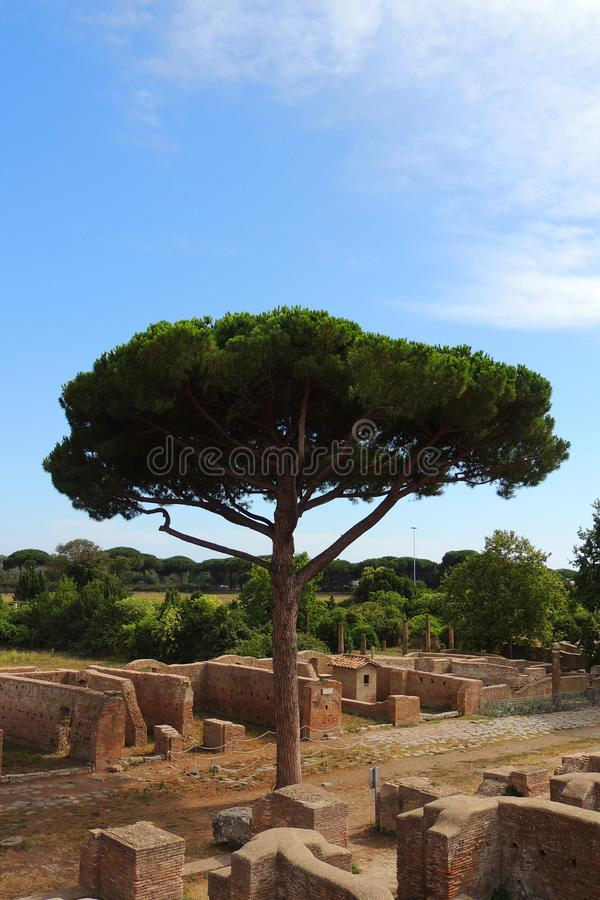 Ostia Antica ruins. Ruins of Ostia Antica are a large archeological site. The most buildings, currently visible, are from the 3rd century BC. This site has about stock photography