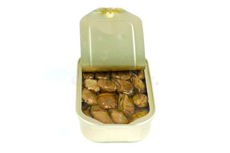 Ostras o mejillones fumados imagen de archivo